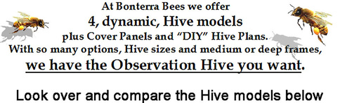 Observation Hives Watch Your Bees Anytime